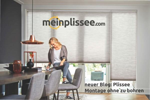 Plissee-Blog-Nr-2