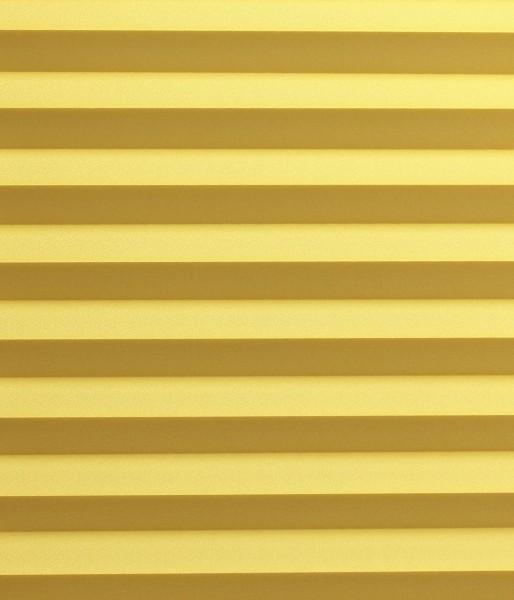 Basicline Primera gelb
