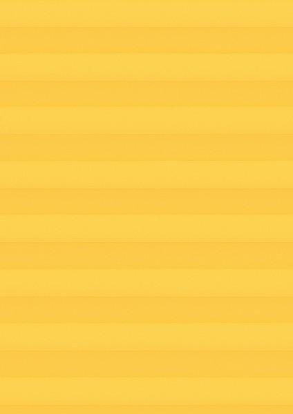 Cara Perlmutt Color gelb