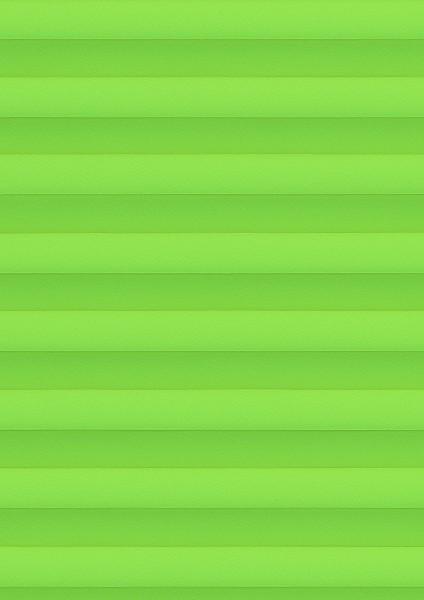 Cara grün