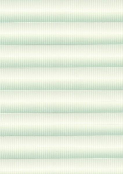 Linea weiß
