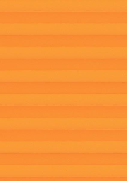 Cara orange