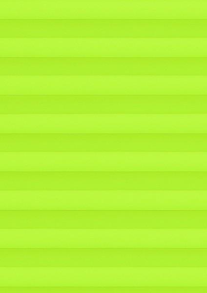 Cara B1 grün