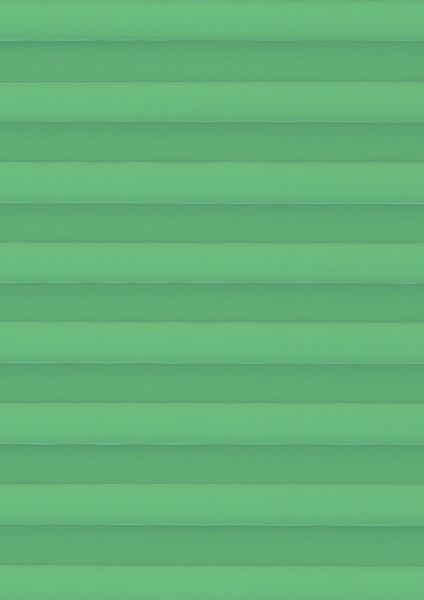 Palado Perlmutt Color grün