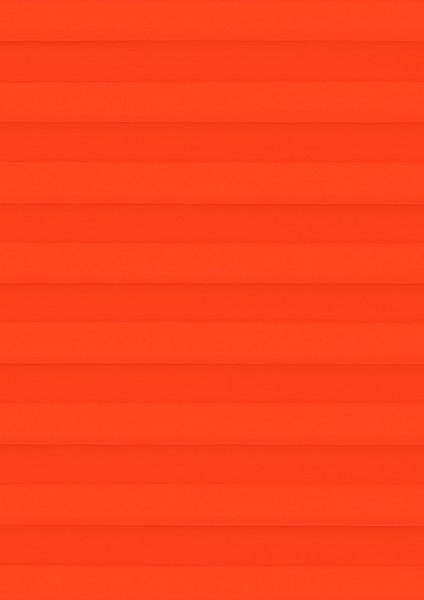 Palado orange