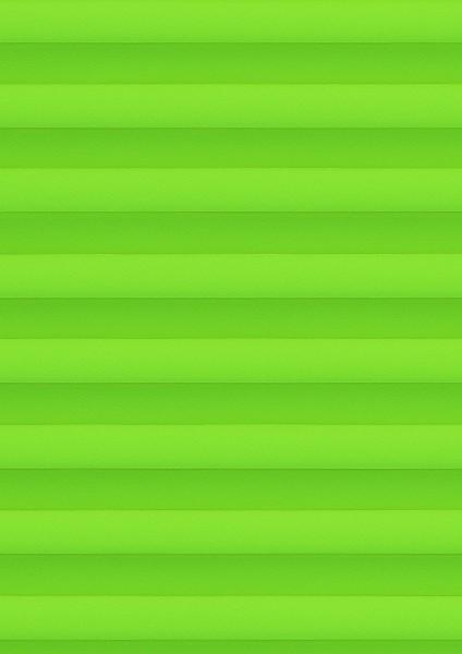 Cara Perlmutt Color B1 grün