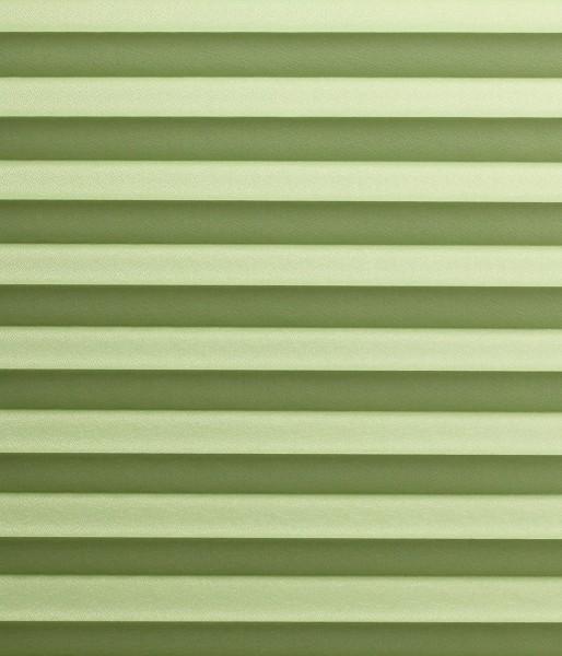 Basicline Primera Perlmutt grün