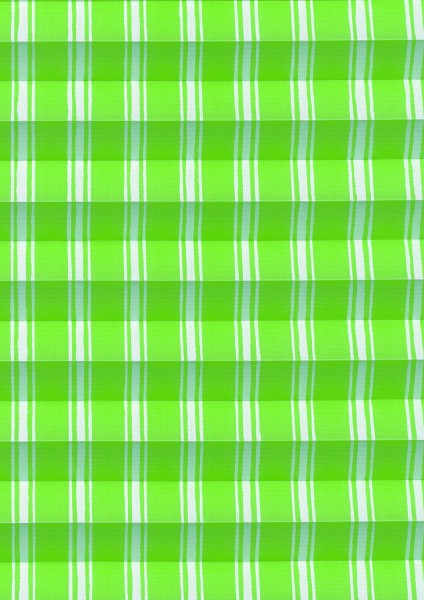 Picnic grün