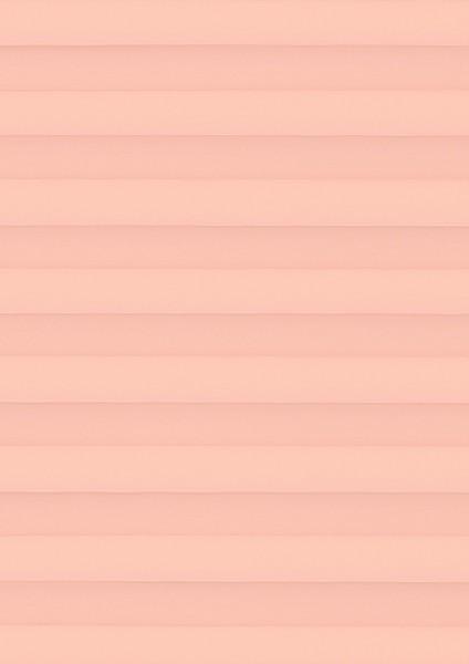 Palado rosé