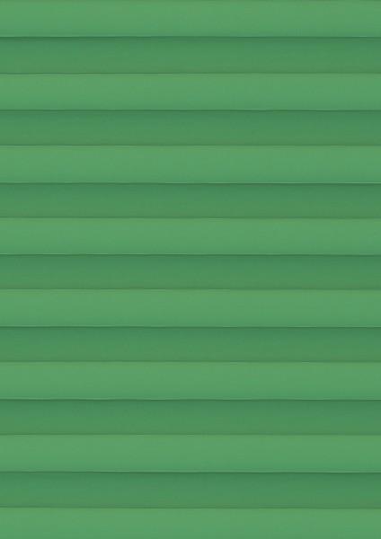 Palado grün