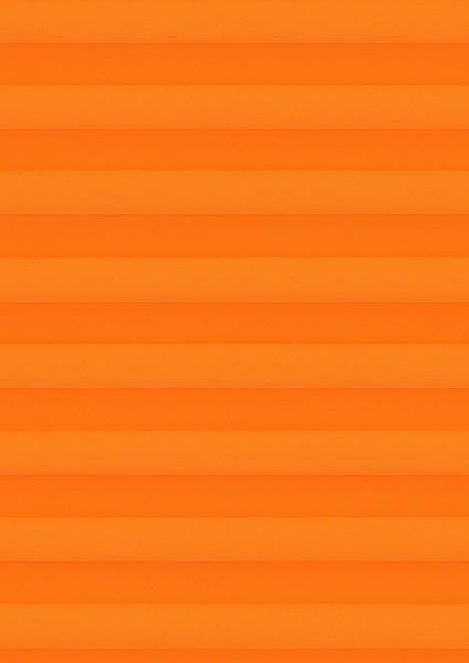 Cara B1 orange