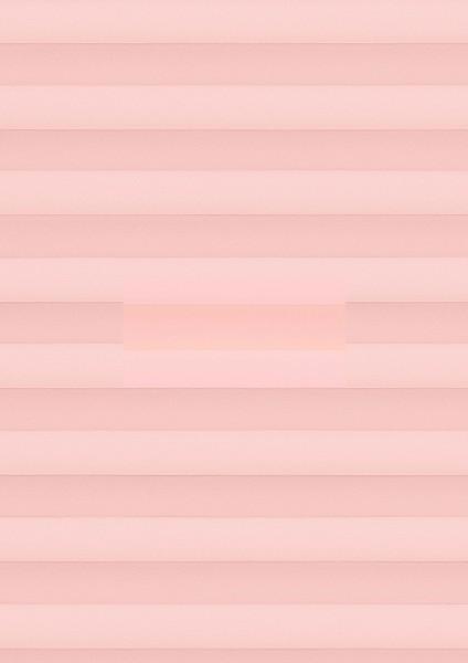 Cara B1 rosé