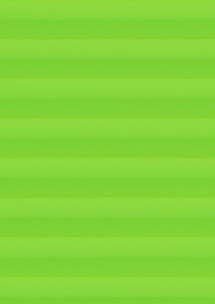 Cara Perlmutt Color grün