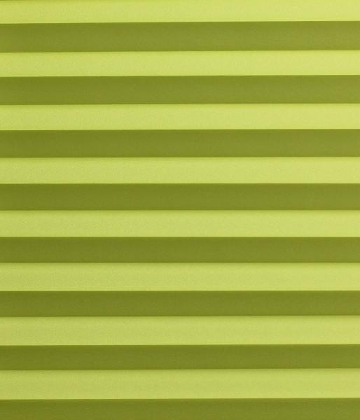 Basicline Primera grün
